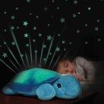 Twilight Turtle Autism Resources