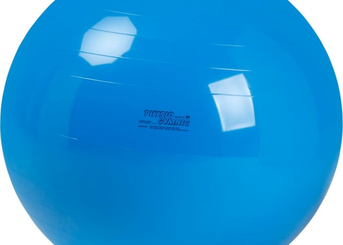 Blue Physio Gym Ball 95cm
