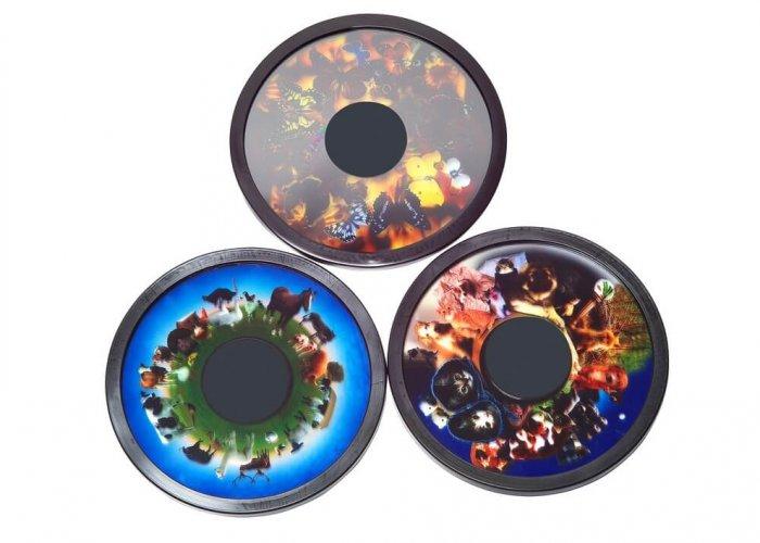 Animal Magnetic Effect Wheel Set B Multi-Sensory Equipment Size 6