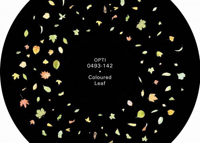 Falling Leaves Effect Kit Multi-Sensory Equipment